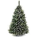 Vánoční stromky a hvězdy
