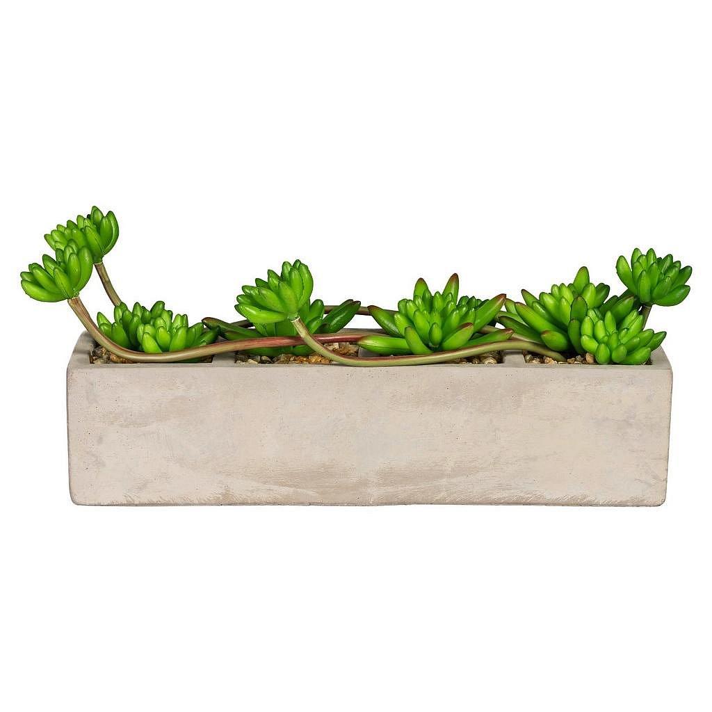 Rostlina Umělá Linus