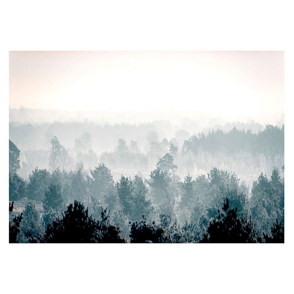 Velkoformátová tapeta Bimago Winter Forest 400x280cm