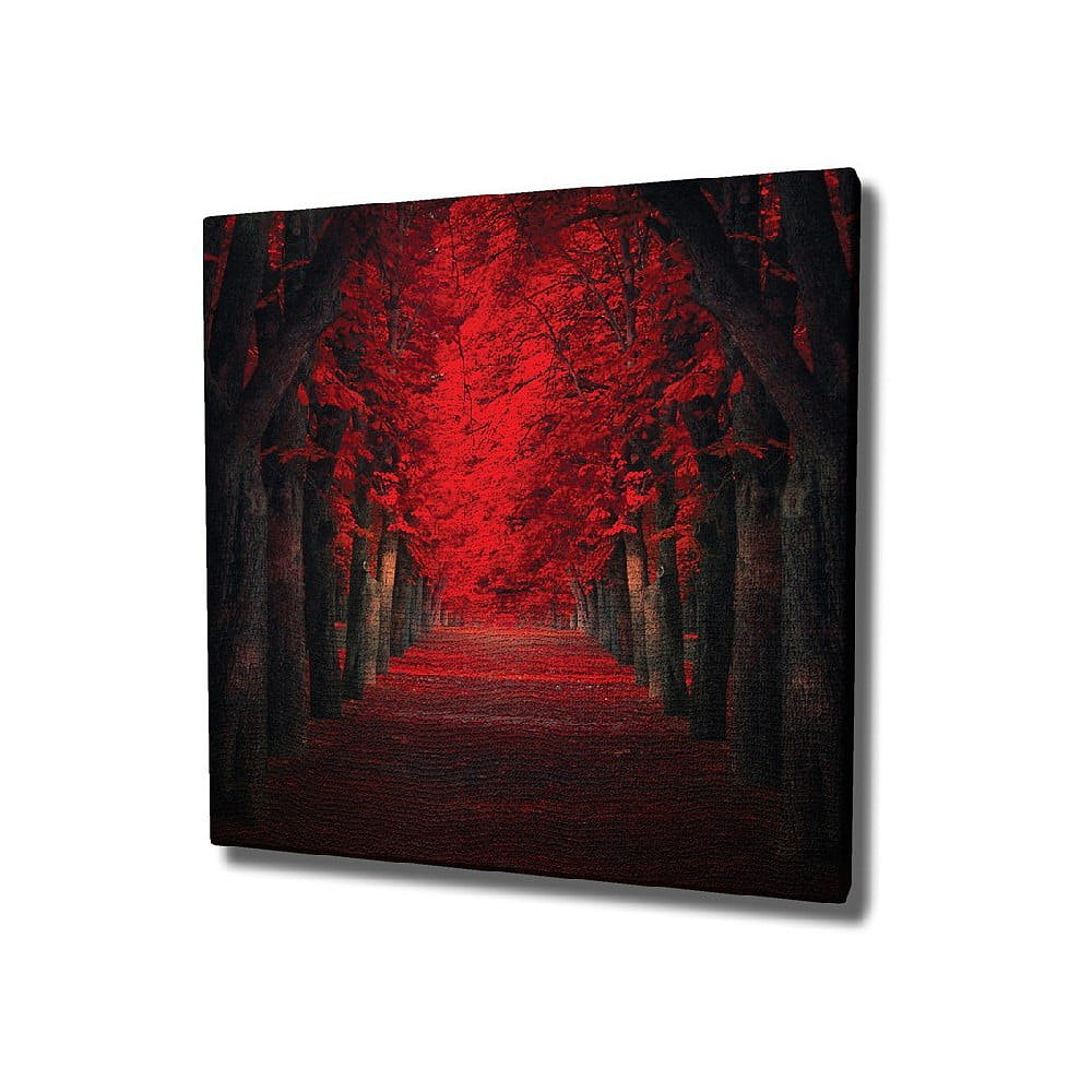 Nástěnný obraz na plátně Red Trees, 45 x 45 cm