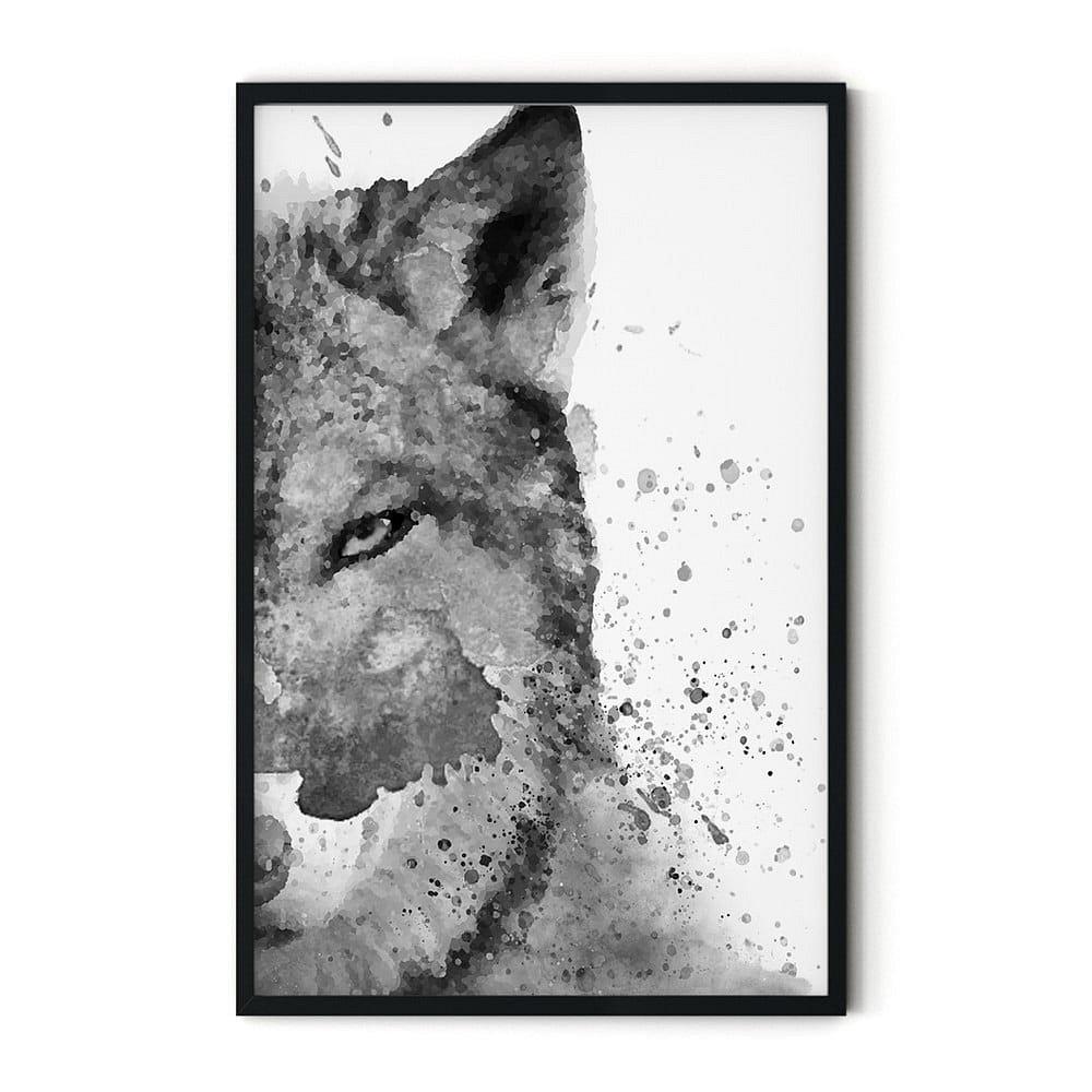 Plakát v rámu Insigne Foxy,46x72cm