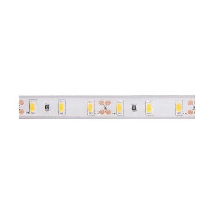 LED pásek Panlux, 5 000K, 6W/m