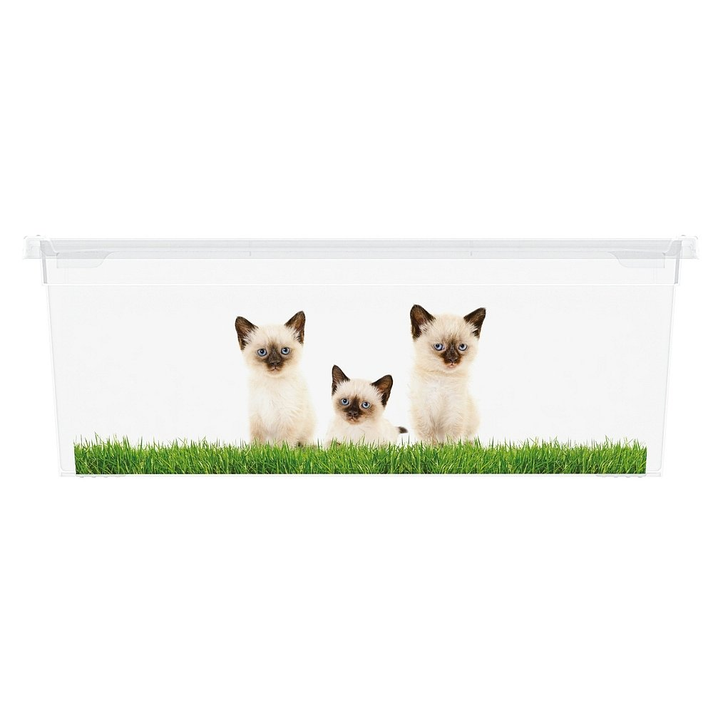 Úložný box velikosti XS motiv Puppy & Kitten