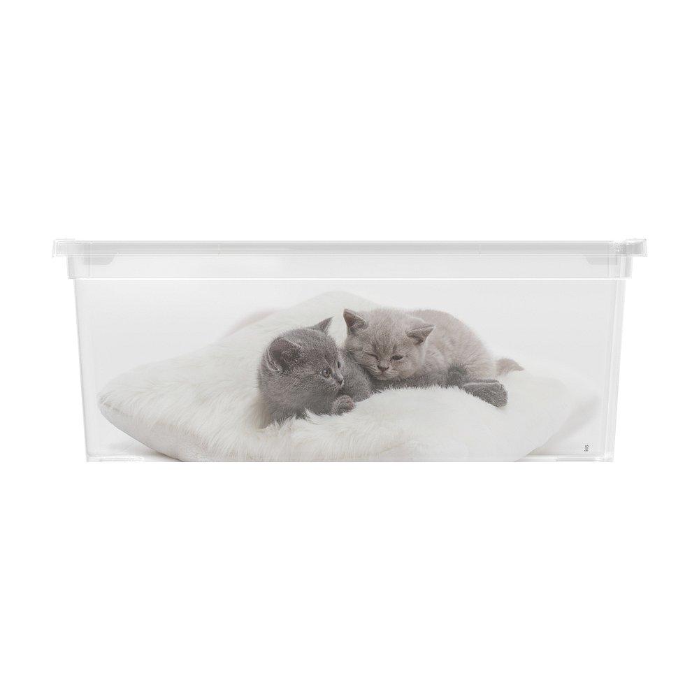 Úložný box velikosti S motiv Puppy & Kitten