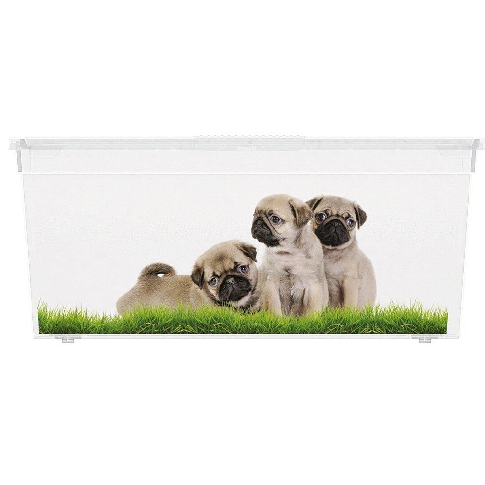 Úložný box velikosti L motiv Puppy & Kitten