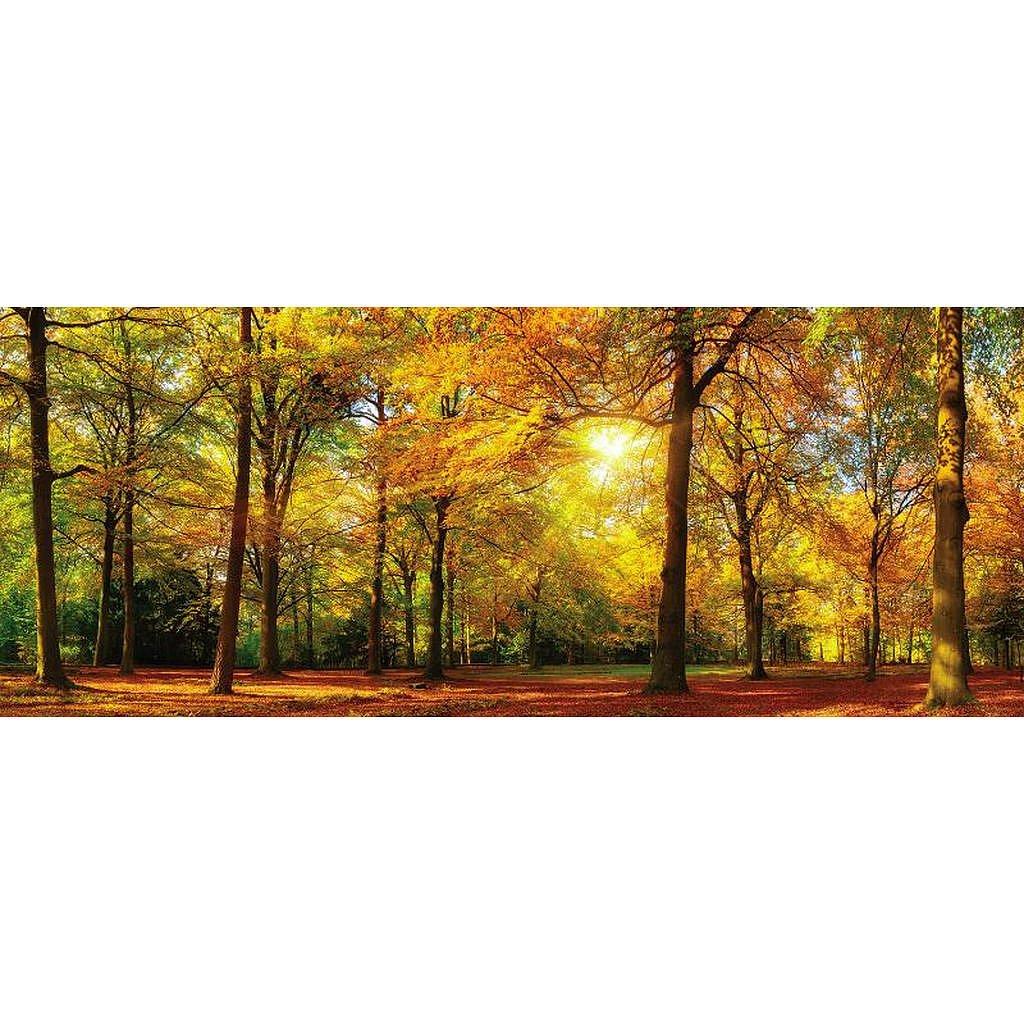 XXXLutz Obraz Skleněný, Krajina & Příroda, 50/125 Cm, - Skleněné obrazy - 0057210358