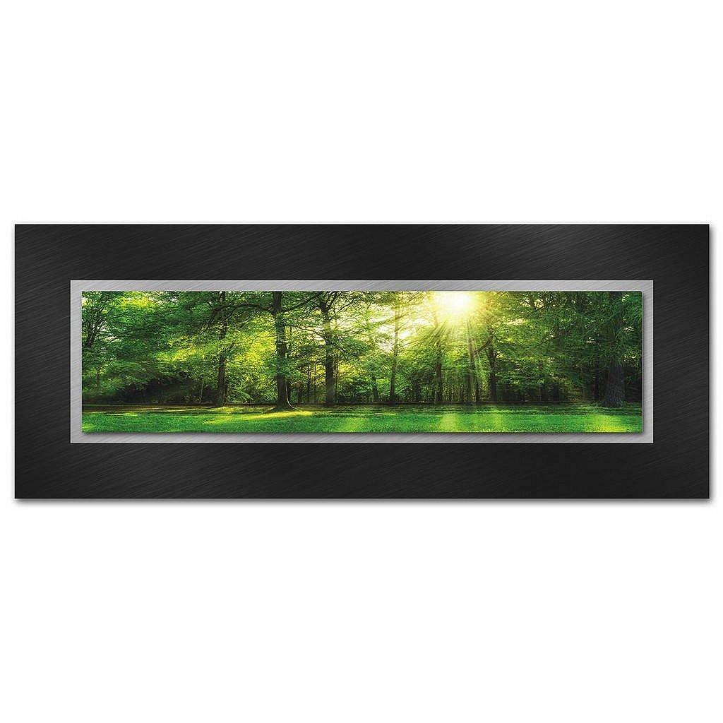 XXXLutz Obraz Na Skle, Stromy, - Skleněné obrazy - 005721069103