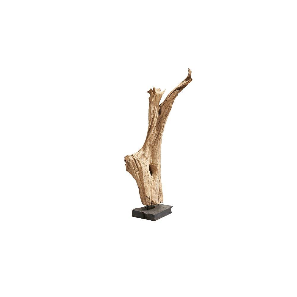 Sconto Dřevěný kořen BALI