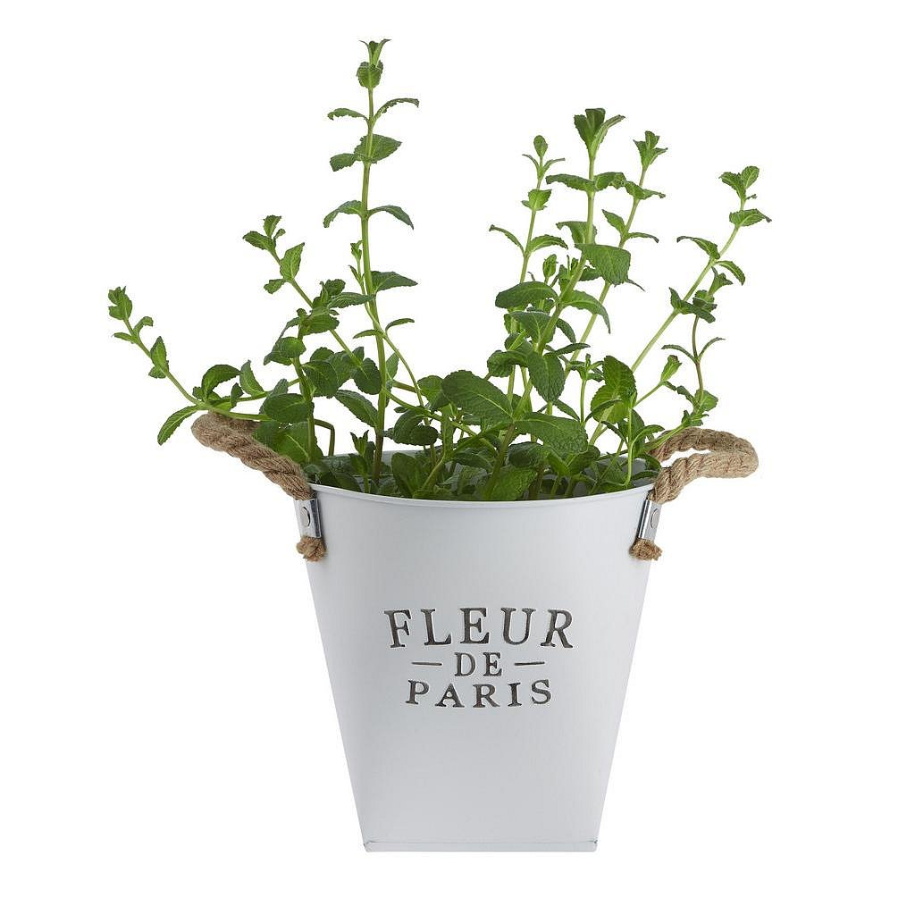 Nádoba Na Květináč Fleur De Paris