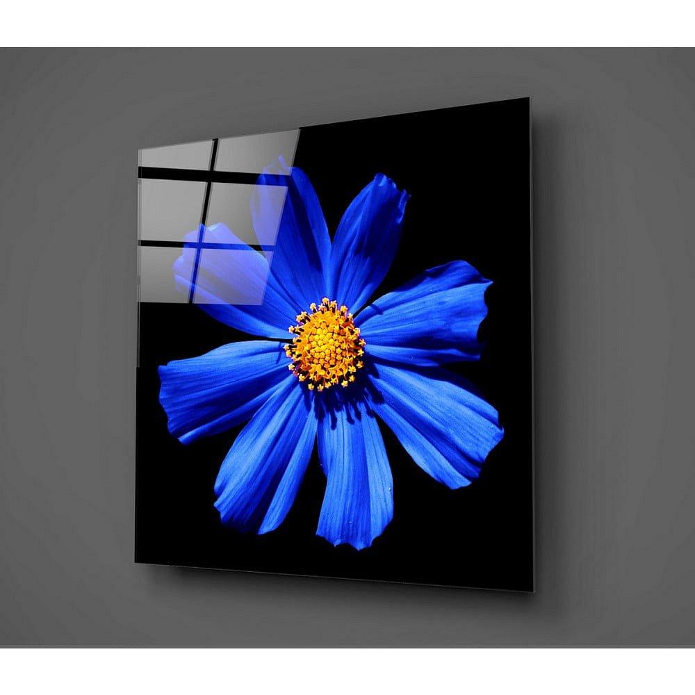 Černo-modrý skleněný obraz Insigne Flowerina, 30x30cm