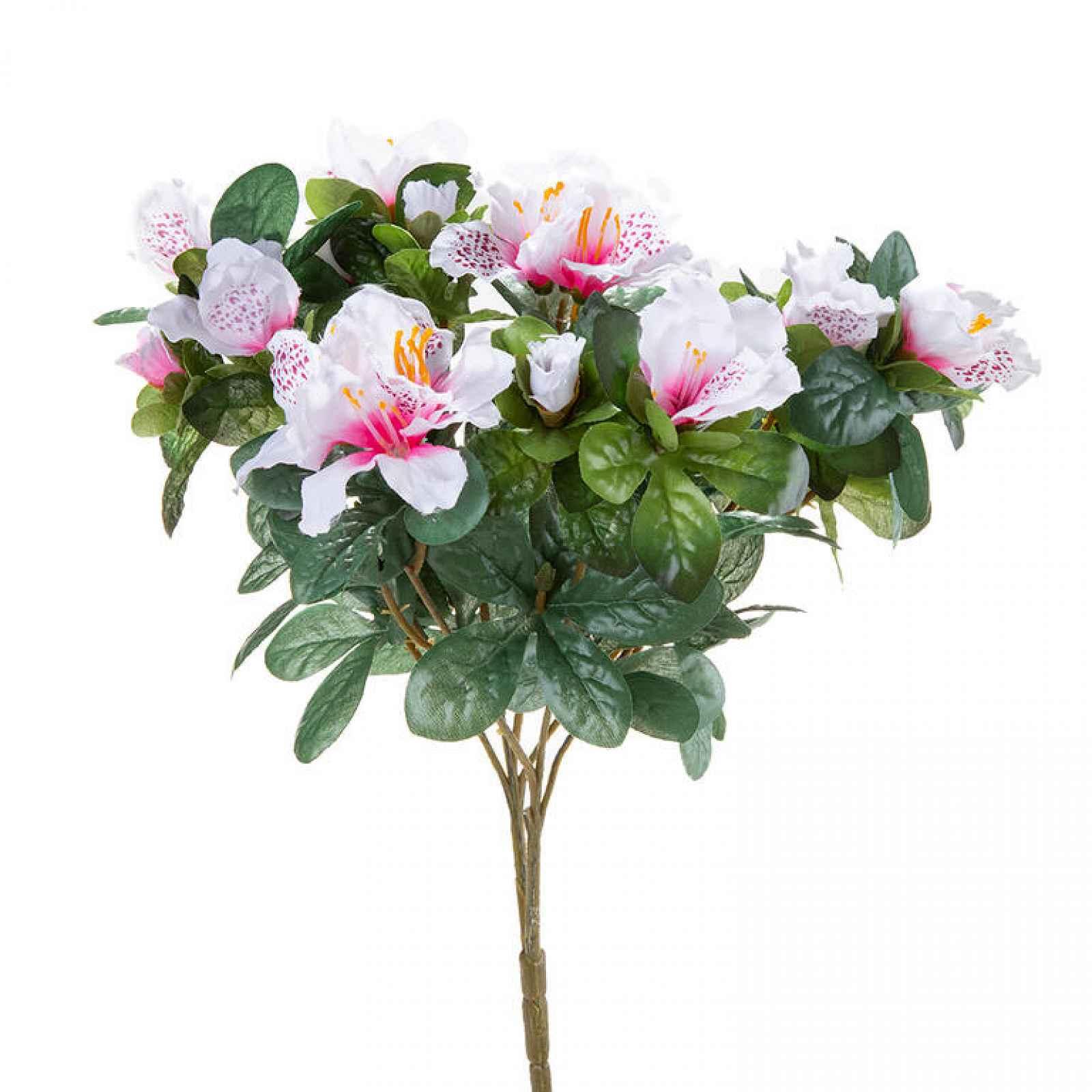 Kytice AZALKA bílá s růžovými středy