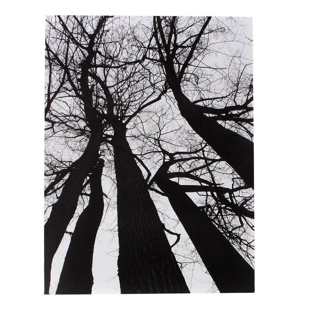 Obraz na plátně Tomasucci Winter Tree