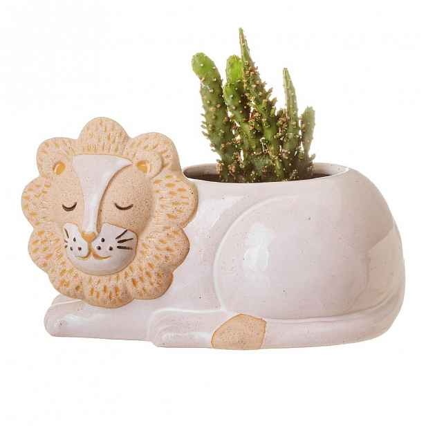 Bílo-béžový květináč Sass & Belle Leo Lion,ø7cm