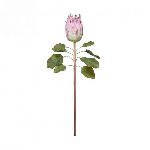Butlers FLORISTA Protea 60 cm - sv. růžová