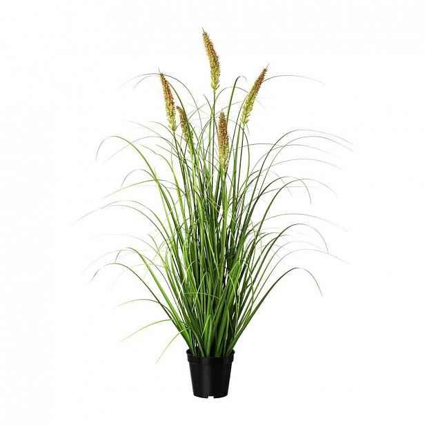 Umělá Rostlina Penisetum Ii
