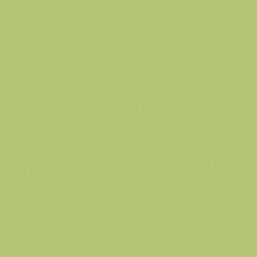 Obklad Rako Color One světle zelená 20x20 cm mat WAA1N465.1