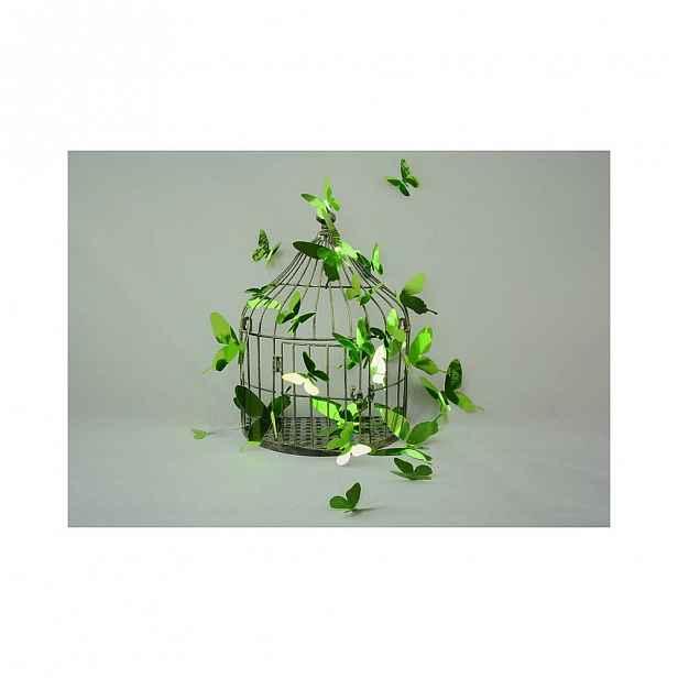 Sada 12 adhezivních 3D samolepek Ambiance Butterflies Green