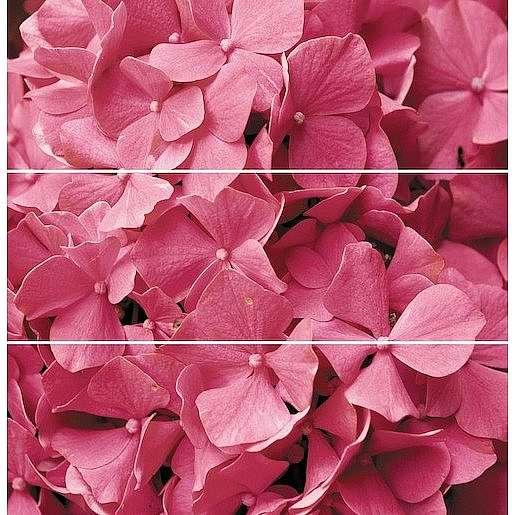 Dekor Fineza Velvet růžová Flowers 75x73 cm lesk DFLOWERS3