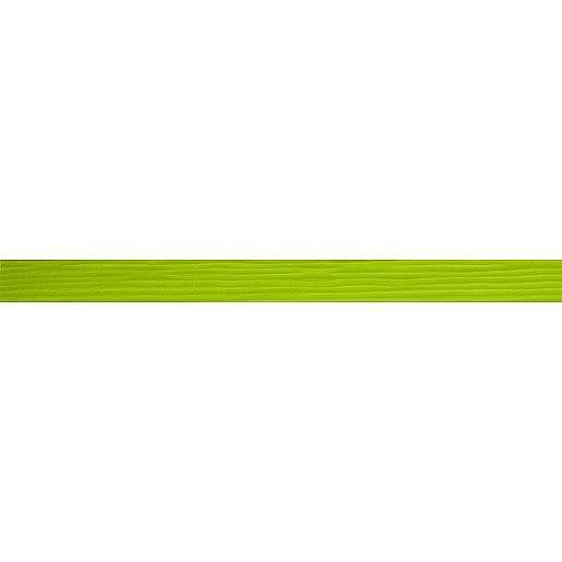 Listela Pilch Salix zelená 3x45 cm lesk L2ZEBR10