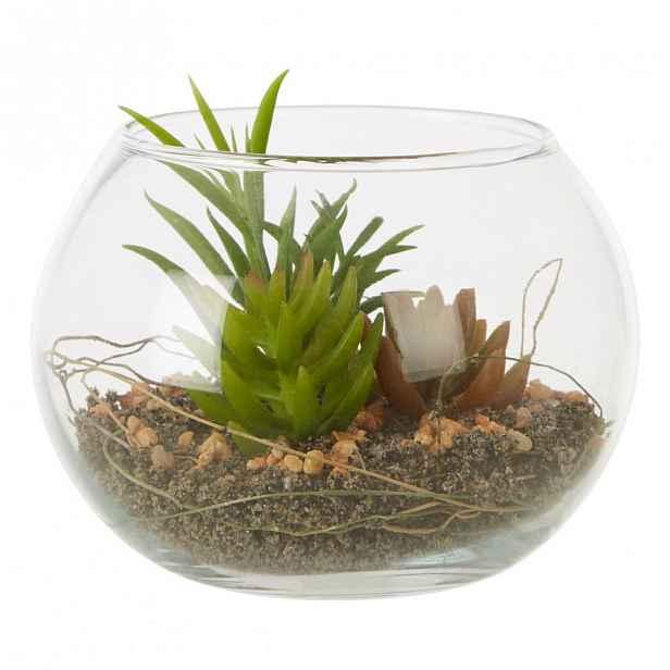 Umělý sukulent ve skleněném květináči Premier Housewares Fiori