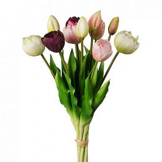 Tulipán 3019304ce-17