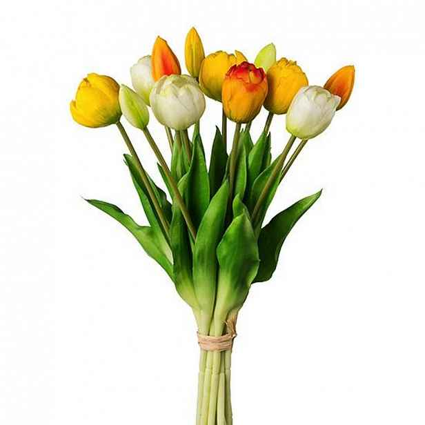 Tulipán 3019304ce-20