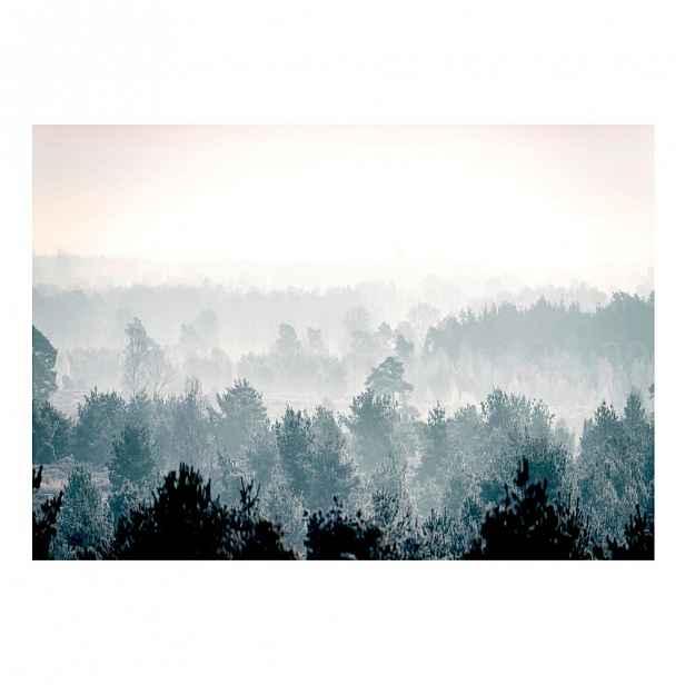 Velkoformátová tapeta Artgeist Winter Forest,200x140cm