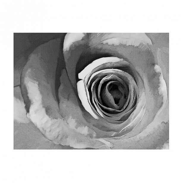 Velkoformátová tapeta Artgeist Paper Rose,400x309cm