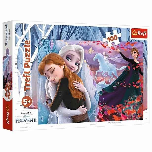 Trefl Puzzle Ledové království Navždy spolu, 100 dílků