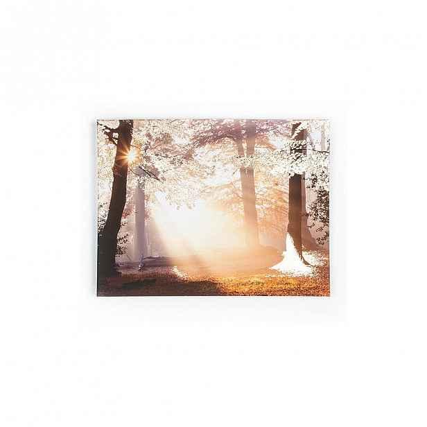 Obraz Graham & Brown Metallic Forest,80x60cm